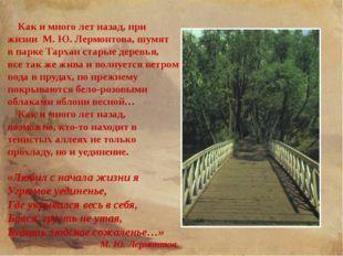 Как и много лет назад, при жизни М. Ю. Лермонтова, шумят в парке Тархан стар