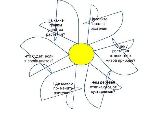 На какие группы делятся растения? Назовите органы растения Почему растения от...