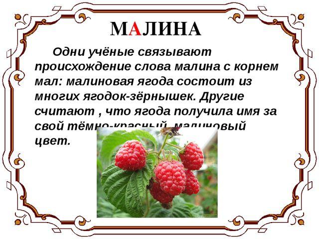 Одни учёные связывают происхождение слова малина с корнем мал: малиновая яго...