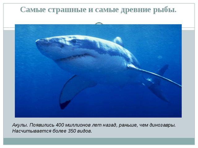 Самые страшные и самые древние рыбы. Акулы. Появились 400 миллионов лет назад...