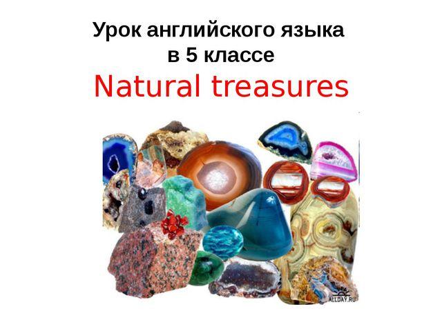 Урок английского языка в 5 классе Natural treasures