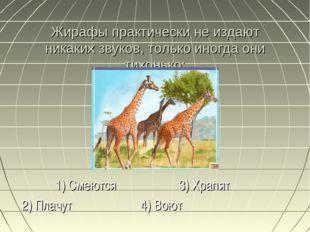 Жирафы практически не издают никаких звуков, только иногда они тихонько: 1) С