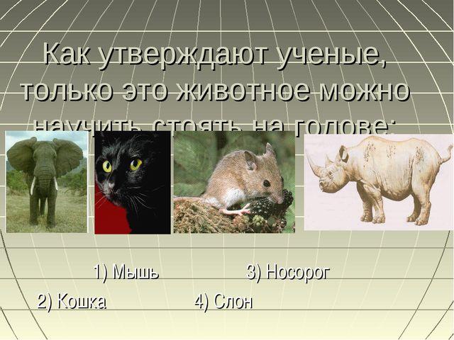 Как утверждают ученые, только это животное можно научить стоять на голове: 1)...