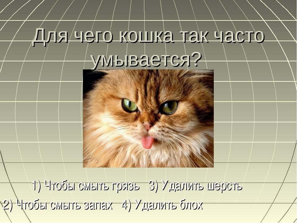 Для чего кошка так часто умывается? 1) Чтобы смыть грязь 3) Удалить шерсть 2)...