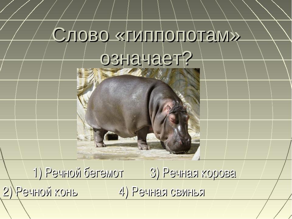 Слово «гиппопотам» означает? 1) Речной бегемот 3) Речная корова 2) Речной кон...