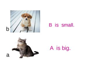 B is small. a b A is big.