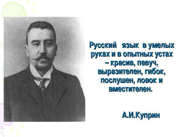 Русскийязыкв умелых руках и в опытных устах – красив, певуч, выразителен...