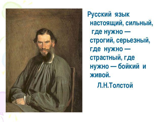 высказывания русских писателей красоте