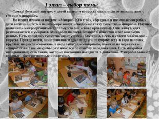 1 этап – выбор темы Самый большой интерес у детей вызвали вопросы, связанные