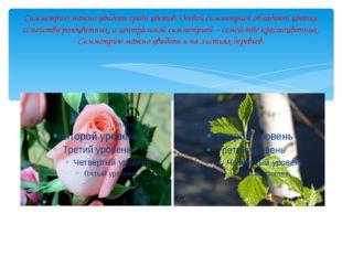 Если преобразование симметрии относительно плоскости переводит фигуру (тело)