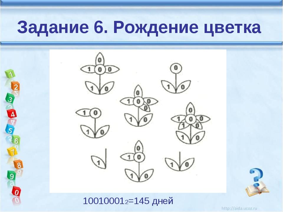 Задание 6. Рождение цветка 100100012=145 дней
