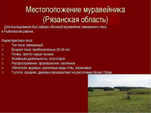 Местоположение муравейника (Рязанская область) Для исследования был найден об