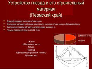 Устройство гнезда и его строительный материал (Пермский край) Внешний материа
