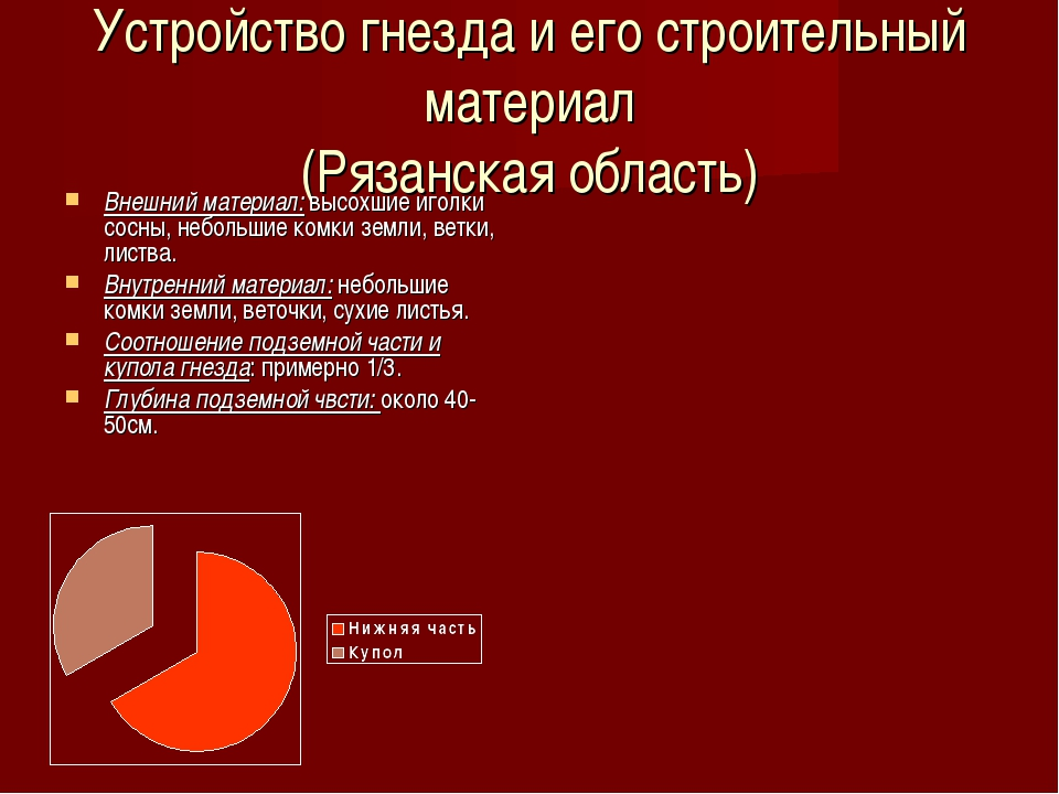 Устройство гнезда и его строительный материал (Рязанская область) Внешний мат...