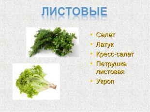Салат Латук Кресс-салат Петрушка листовая Укроп
