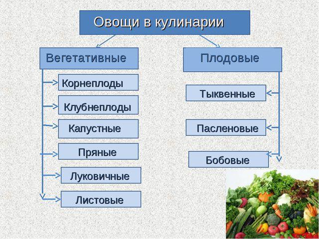 Овощи в кулинарии Вегетативные Плодовые Корнеплоды Клубнеплоды Капустные Луко...