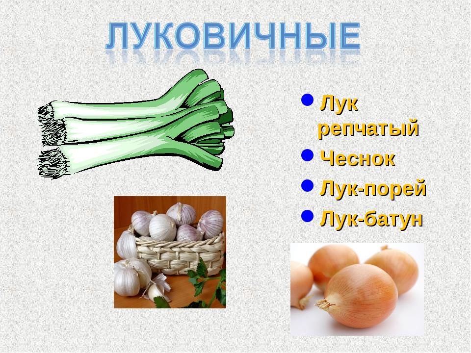 luk-chesnok-klitoru