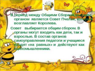 В период между Общими Сборами высшим органом является Совет Пчелок, который в