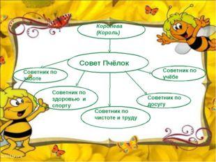 Королева (Король) Совет Пчёлок Советник по учёбе Советник по досугу Советник