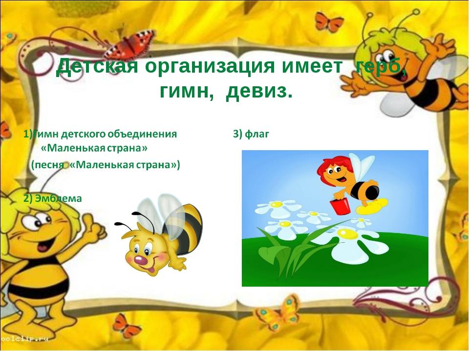 Детская организация имеет герб, гимн, девиз.