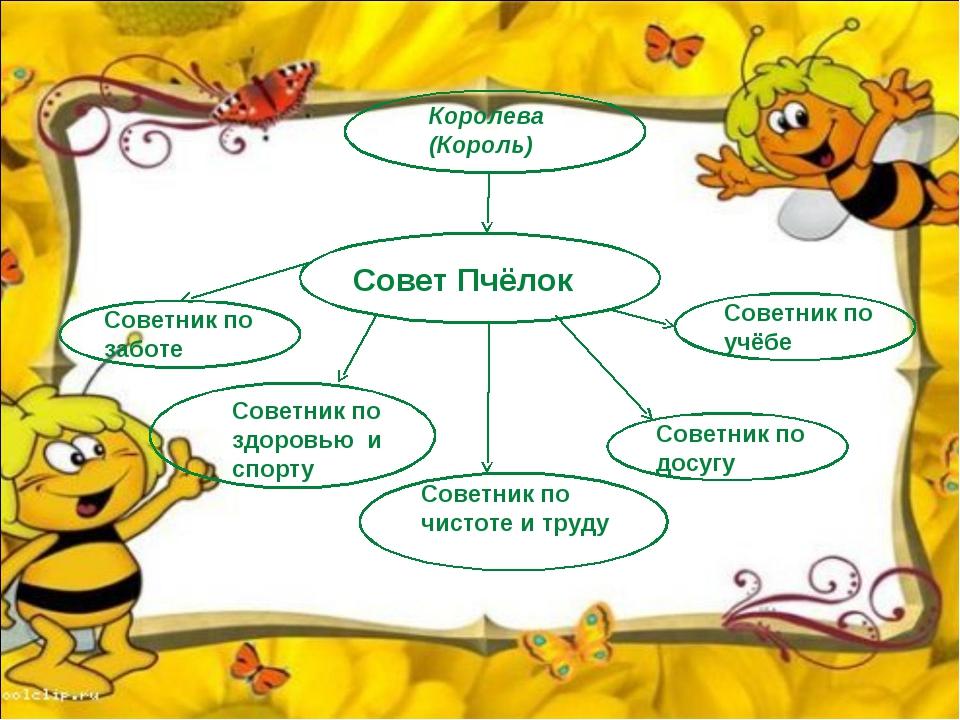 Королева (Король) Совет Пчёлок Советник по учёбе Советник по досугу Советник...