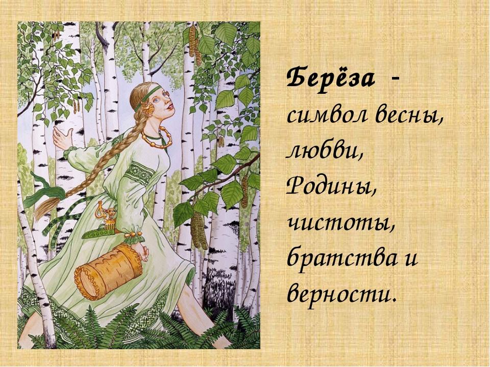 Берёза - символ весны, любви, Родины, чистоты, братства и верности.