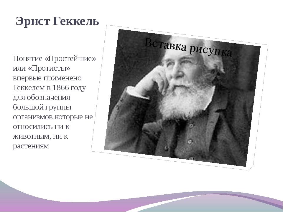 Эрнст Геккель Понятие «Простейшие» или «Протисты» впервые применено Геккелем...