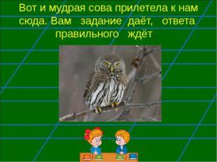 Вот и мудрая сова прилетела к нам сюда. Вам задание даёт, ответа правильного