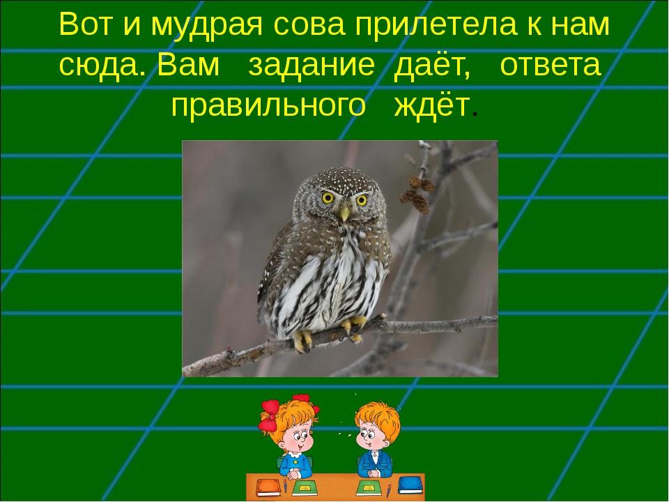 Вот и мудрая сова прилетела к нам сюда. Вам задание даёт, ответа правильного...
