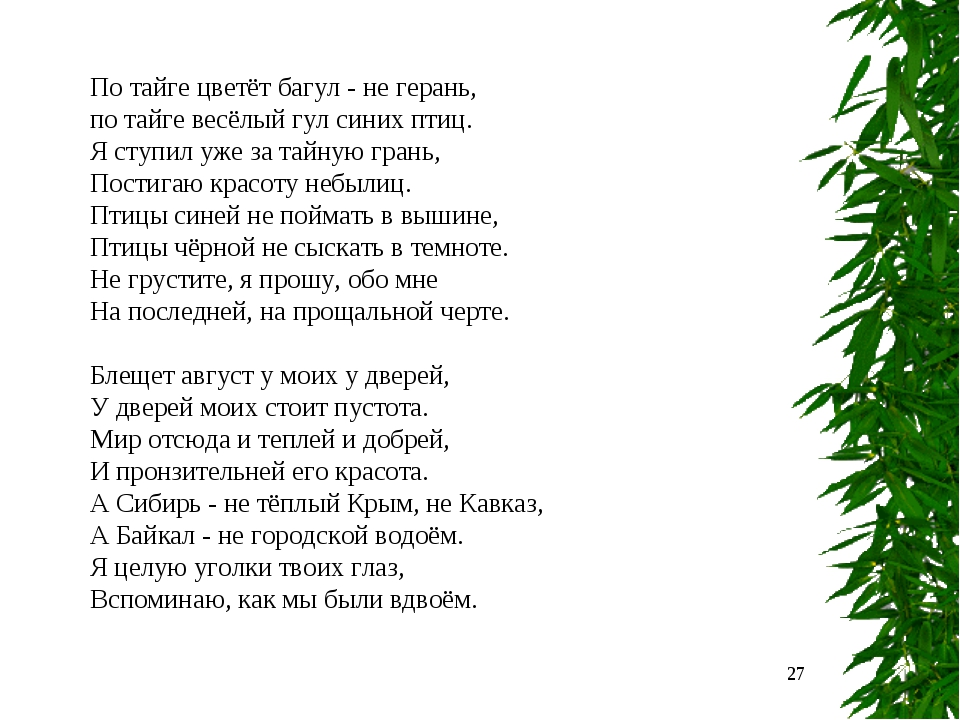 * По тайге цветёт багул - не герань, по тайге весёлый гул синих птиц. Я ступи...