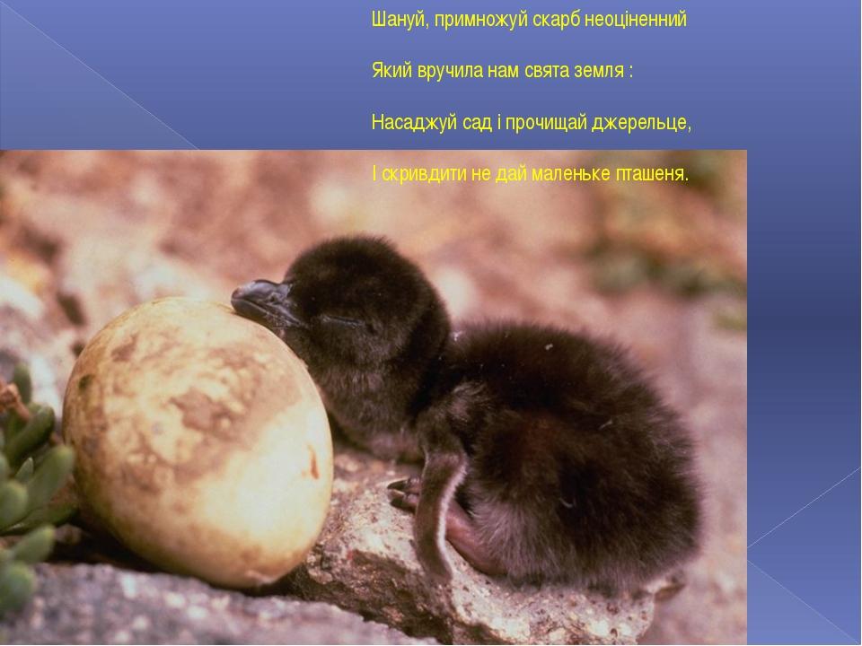 Шануй, примножуй скарб неоціненний Який вручила нам свята земля : Насаджуй с...