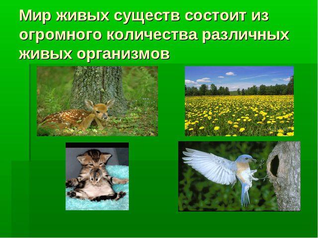 Мир живых существ состоит из огромного количества различных живых организмов