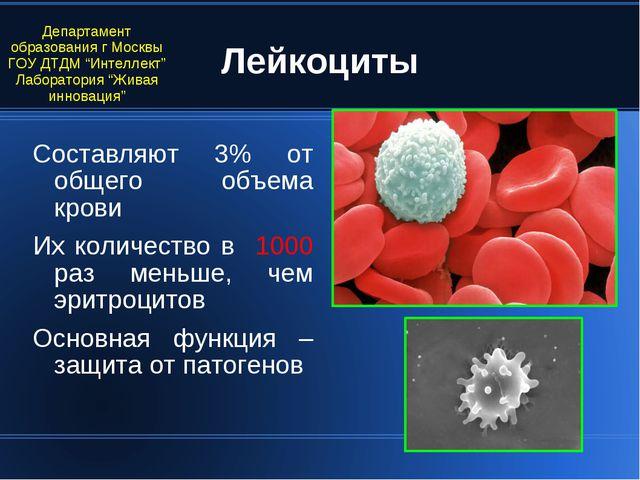 Лейкоциты Составляют 3% от общего объема крови Их количество в 1000 раз меньш...