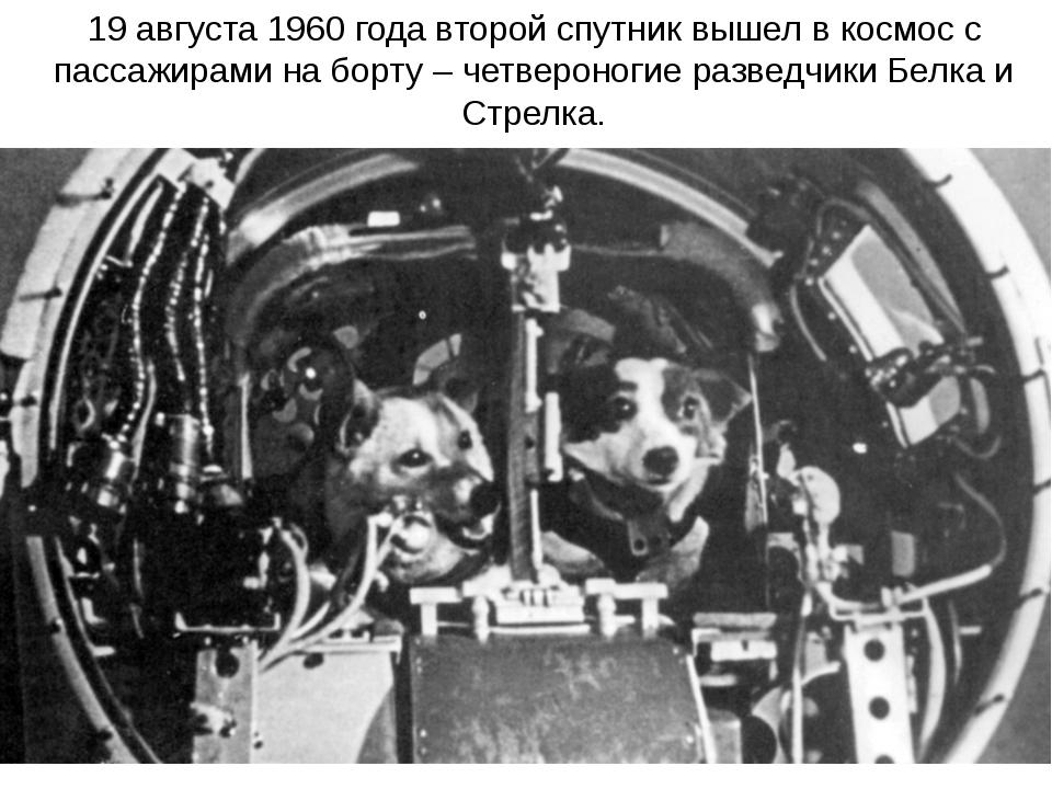 19 августа 1960 года второй спутник вышел в космос с пассажирами на борту – ч...
