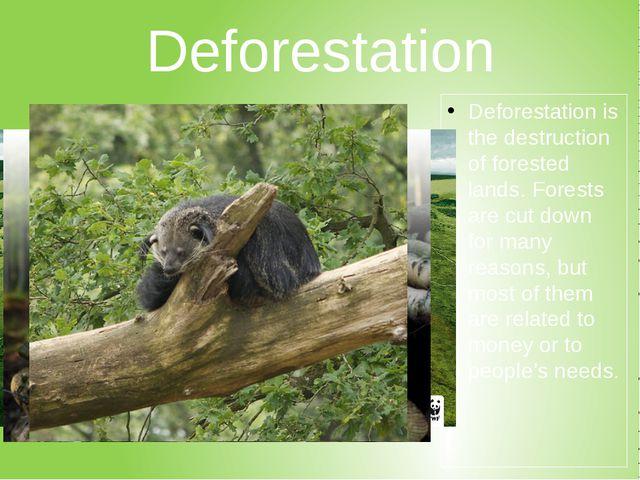 Deforestation Deforestationis the destruction of forested lands. Forests are...