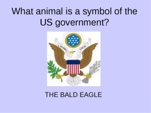 What animal is a symbol of the US government? THE BALD EAGLE