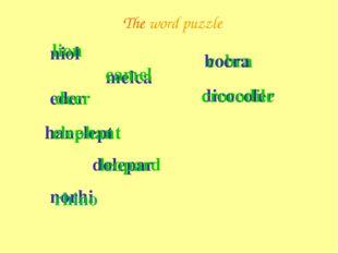 The word puzzle niol lion eder deer melca camel hanelept elephant dolepar leo
