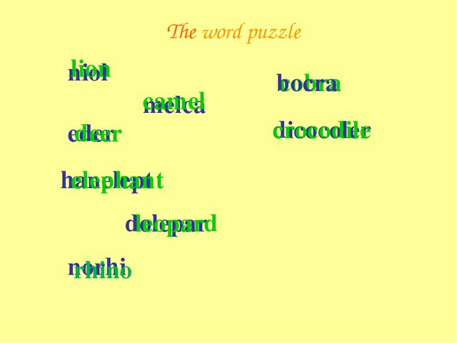 The word puzzle niol lion eder deer melca camel hanelept elephant dolepar leo...
