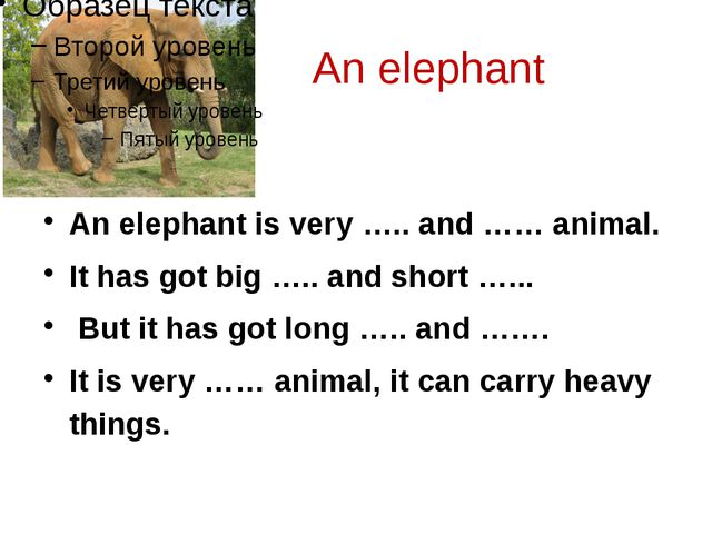 An elephant An elephant is very ….. and …… animal. It has got big ….. and sh...