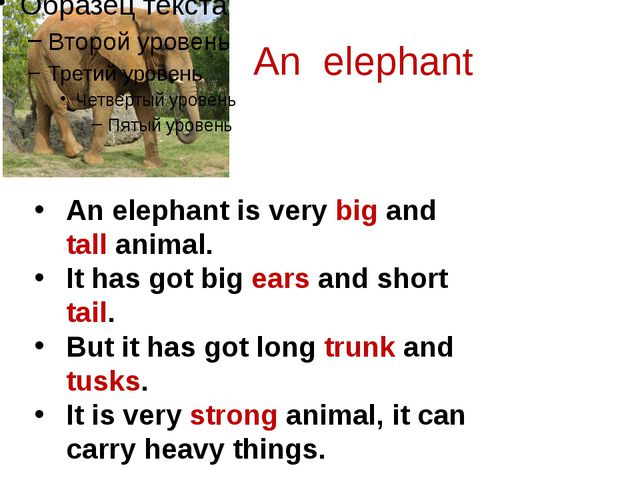 An elephant An elephant is very big and tall animal. It has got big ears and...