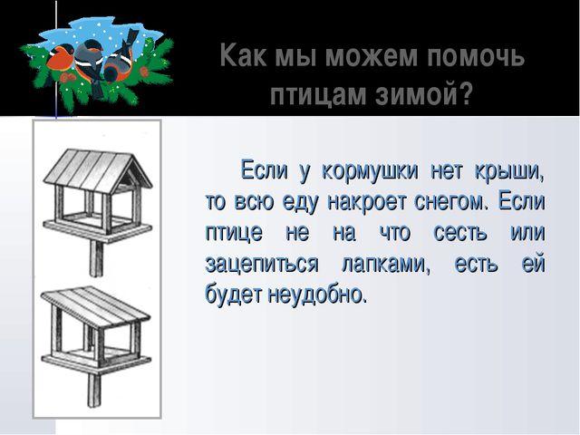 Как мы можем помочь птицам зимой? Если у кормушки нет крыши, то всю еду накро...