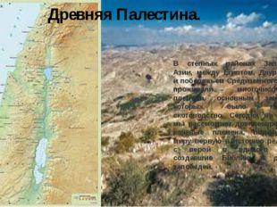 Древняя Палестина. В степных районах Западной Азии, между Египтом, Двуречьем