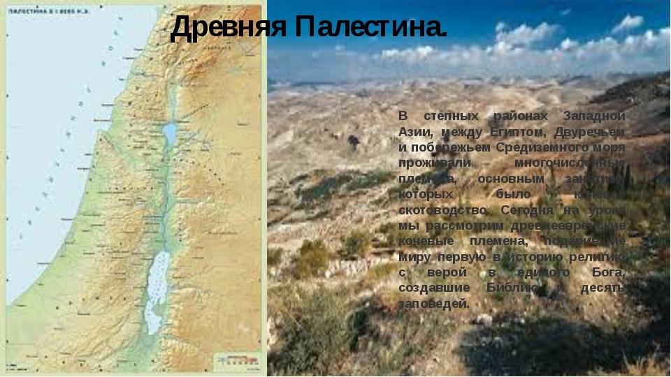 Древняя Палестина. В степных районах Западной Азии, между Египтом, Двуречьем...
