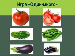 Игра «Один-много» www.logoped.ru