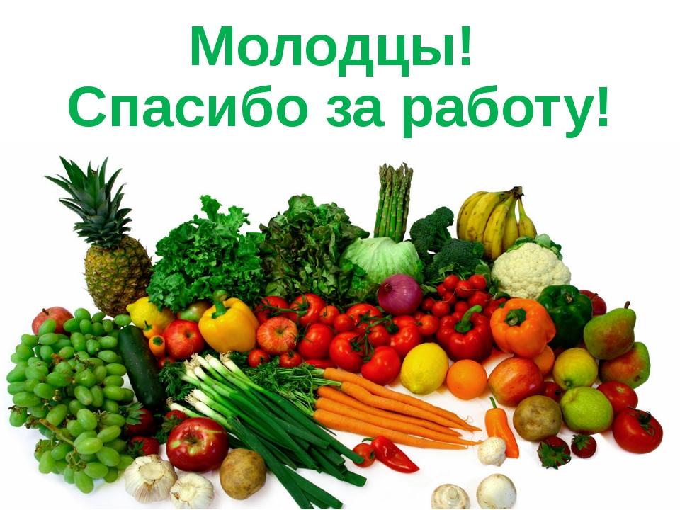Молодцы! Спасибо за работу! www.logoped.ru