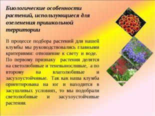 Биологические особенности растений, использующиеся для озеленения пришкольной