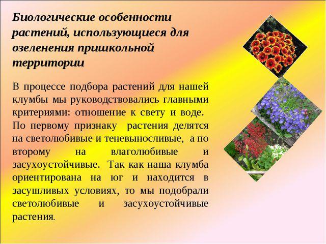 Биологические особенности растений, использующиеся для озеленения пришкольной...