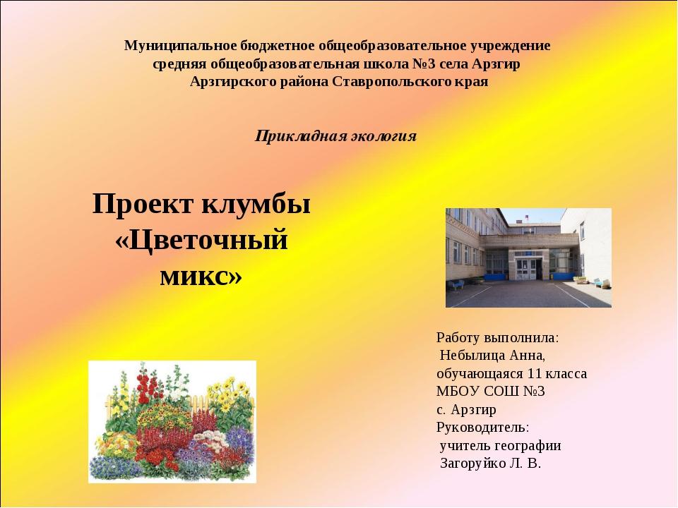 Работу выполнила: Небылица Анна, обучающаяся 11 класса МБОУ СОШ №3 с. Арзгир...
