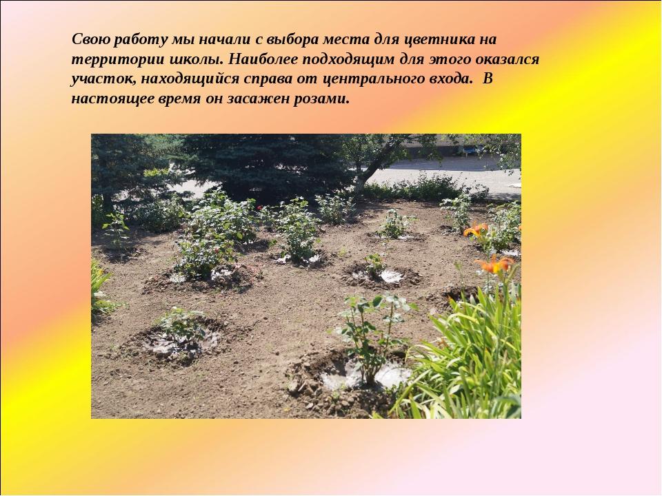 Свою работу мы начали с выбора места для цветника на территории школы. Наибол...