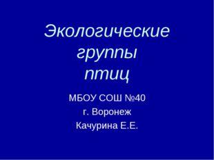 Экологические группы птиц МБОУ СОШ №40 г. Воронеж Качурина Е.Е.